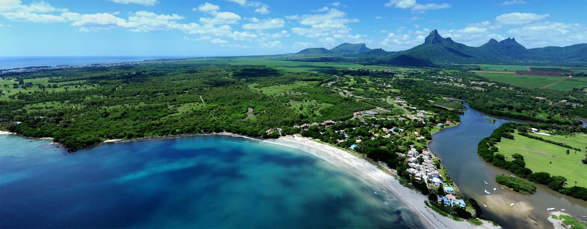 02_PinkPig_Mauritius_HR