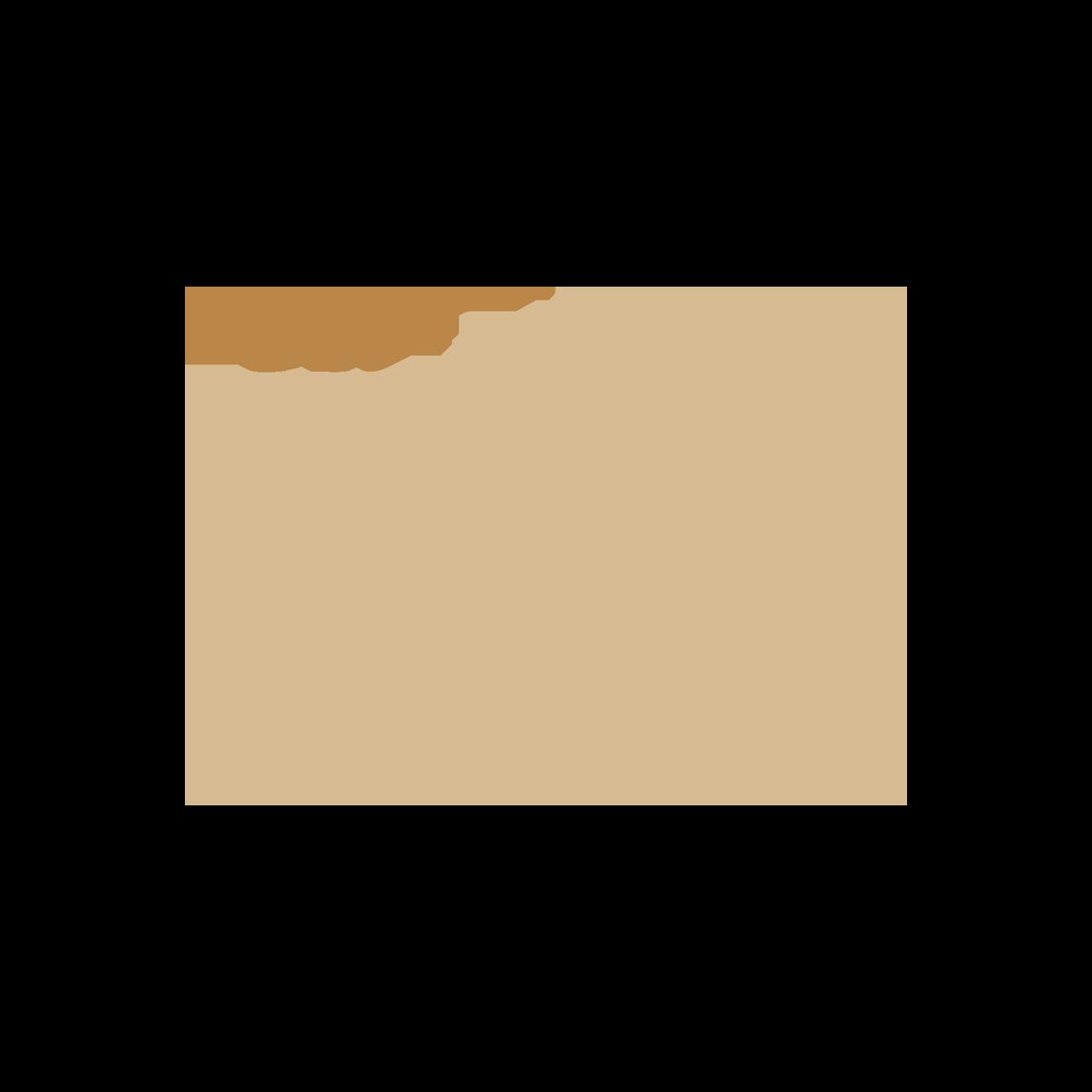 new_logo_KINGS-GINGER